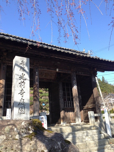 南信へ桜を見に行こう~!